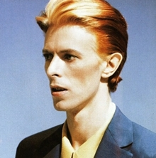 thin white duke1